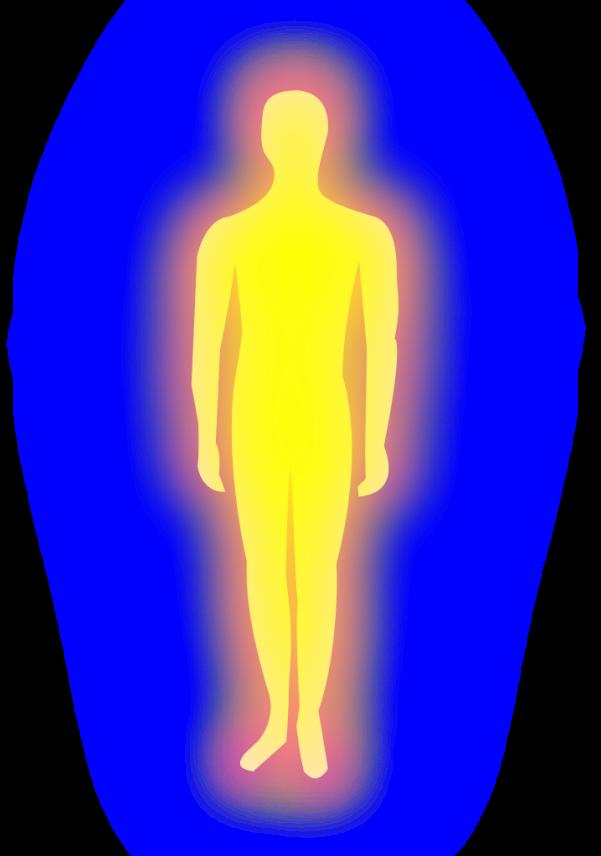 kisspng-aura-human-body-subtle-body-energy-homo-sapiens-body-5abe1696bdfc17.7201300815224070627782